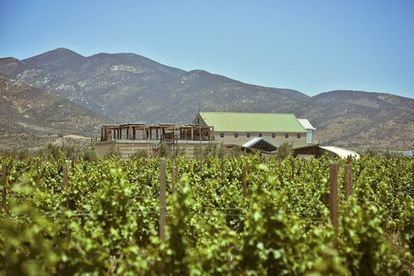 Mexico Has Its Own Wine Country—And It's Amazing | Baja California | Scoop.it