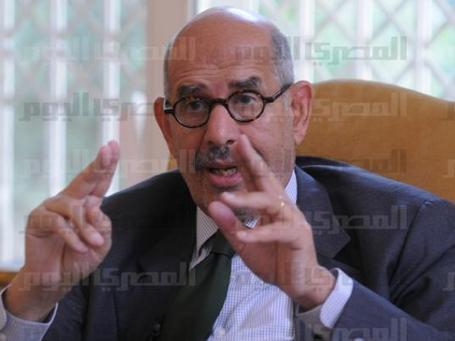 ElBaradei condemns fatwa approving murder of NSF members   Égypt-actus   Scoop.it