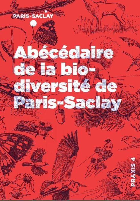 Abécédaire de la biodiversité de Paris-Saclay, disponible sur le site Epaps.fr | Insect Archive | Scoop.it