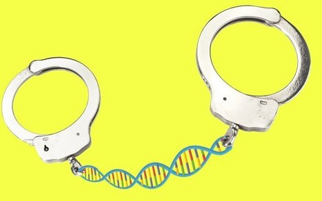 Cleared by DNA in Murder, Prosecuted Again Anyway | Upsetment | Scoop.it