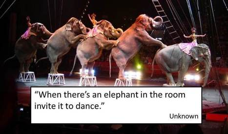 10 Power Tips for Dancing with Elephants | CEO's Almanac | Scoop.it