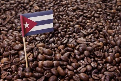 First Cuban product to be sold in U.S.: coffee -- sorry no cigar | Coffee News | Scoop.it