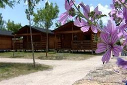 Campings de toda España ofrecerán estancia gratuita en verano a familias con padres en paro | Turismo en España | Scoop.it