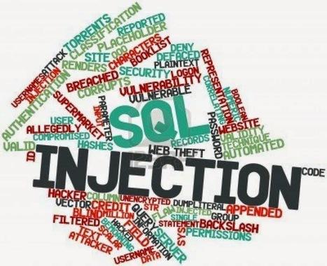 Kumpulan Google Dork SQL Injection Terbaru 2015 ~ Seo Newbie | Komputer | Scoop.it