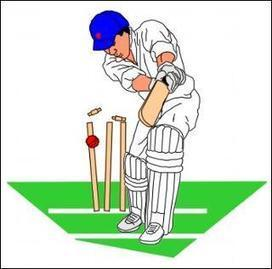 Cricket lingo | Sports humour | Buzz1 | buzz1 | Scoop.it