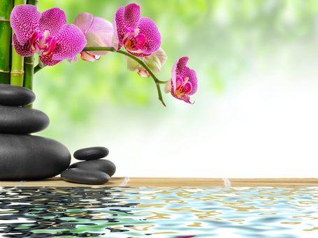 Vivez le Moment Présent | Le blog de Bonheurs Magazine | communication non violente et méditation | Scoop.it