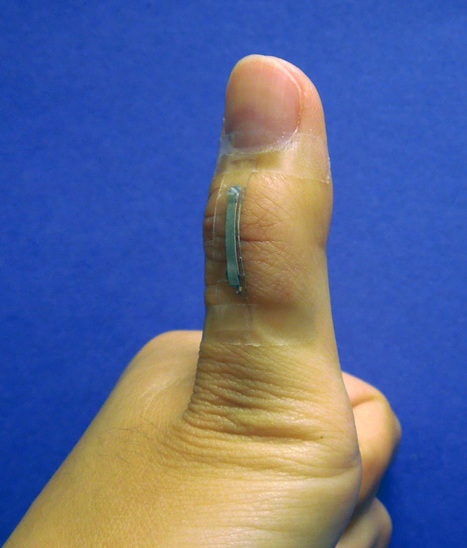 Silver nanowire sensors hold promise for prosthetics and robots | world news | Scoop.it