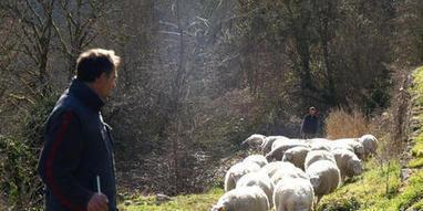 Autour du pastoralisme et du patrimoine de Castels à Meyrals | Agriculture en Dordogne | Scoop.it
