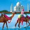 Best Hotels in Paharganj Delhi