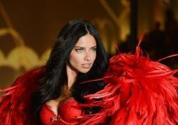 Victoria's Secret charges infringement of perfume brands promoted by Adriana Lima, Karlie Kloss and others | GSP Trademark | Scoop.it