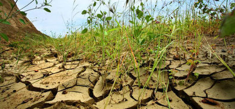La adaptación al cambio climático es la adaptación a la problemática del agua (#DMA2015) | Blogs El Tiempo | Infraestructura Sostenible | Scoop.it