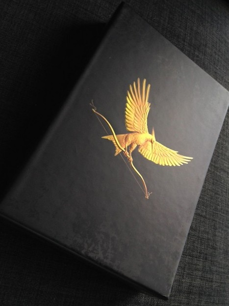 Why young adults love dystopian novels - HG Girl On Fire   Dystopian Fiction   Scoop.it
