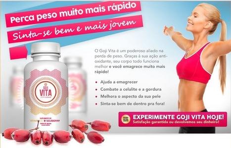 Goji Vita Revisão - antes de comprar ler este primeiro!!! | Work Out and Eat Right Goji Vita | Scoop.it
