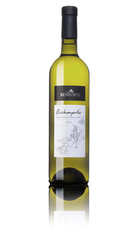 Barbangelo, Verdicchio dei Castelli di Jesi, Benforte | Wines and People | Scoop.it