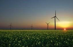 En 2014, le renouvelable a couvert 20% de nos besoins en électricité | Le Petit Jardinier Urbain | Scoop.it