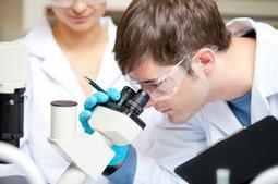 Medicina: scoperta molecola che uccide le cellule tumorali ubriacandole | Editoria e Comunicazione scientifica | Scoop.it