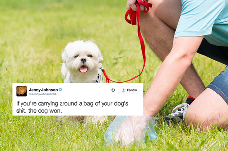 19 Dog Tweets That Are Funny Because They Are Fucking True | Strange days indeed... | Scoop.it