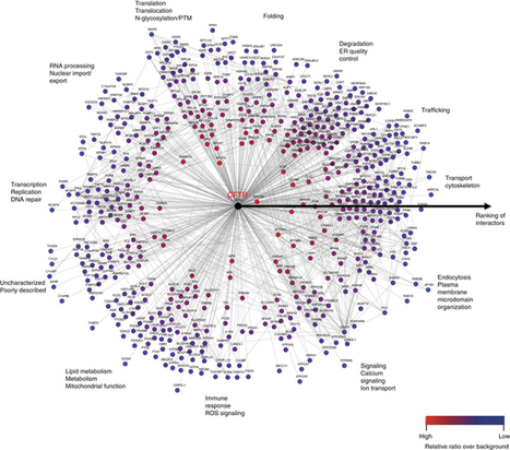 Deep interactome profiling of membrane proteins by co-interacting protein identification technology : Nature Protocols : Nature Research | Mass spectrometry | Scoop.it