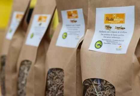 Crunch time for the insect industry | Entomophagy: Edible Insects and the Future of Food | Scoop.it