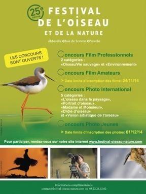 Blog Photo » Concours Photo : 25e édition du festival de l'oiseau et de la nature | un peu de tout et de rien | Scoop.it