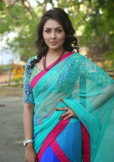 Actress Madhu Shalini Photos in Classic Net Saree with Latest Blouse Designs 2015, Actress, Indian Fashion, Tollywood | Indian Fashion Updates | Scoop.it