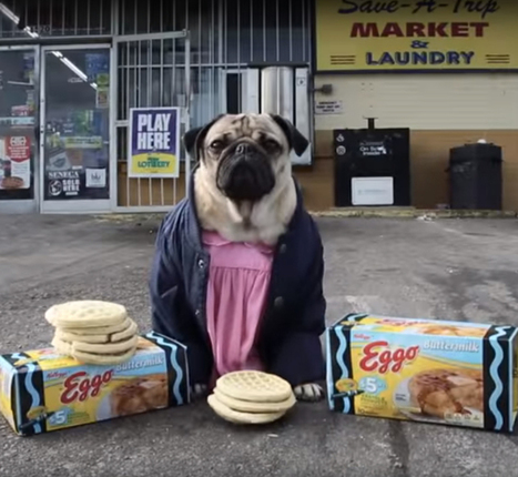 """Stranger Pugs"" Hilariously Reimagines ""Stranger Things"" as an Alternate Pug-Filled Reality 
