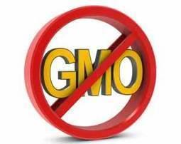 Complete list of NON-GMO food brands | Paz y bienestar interior para un Mundo Mejor | Scoop.it