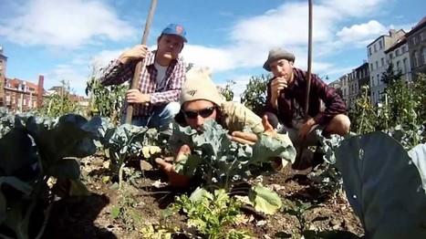 [vidéo]Le rap engagé du potager   Solutions locales   Scoop.it
