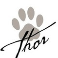 What Thor Told Me (thorsblog) | What Thor Told Me | Scoop.it