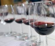 Georgian wine may be marketed at Sochi Olympics | News | Democracy & Freedom Watch | Southern California Wine and Craft Spirits Journal | Scoop.it