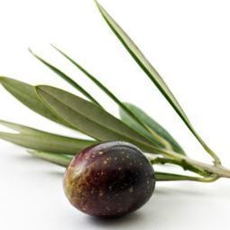 Olives - 27 Foods That Can trigger Migraines - Migraine   Skinny Wraps for Guys and Gals   Scoop.it