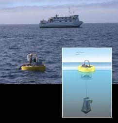 New research finds oceanic microbes behave in synchrony across ocean basins   Science, Technology, and Current Futurism   Scoop.it
