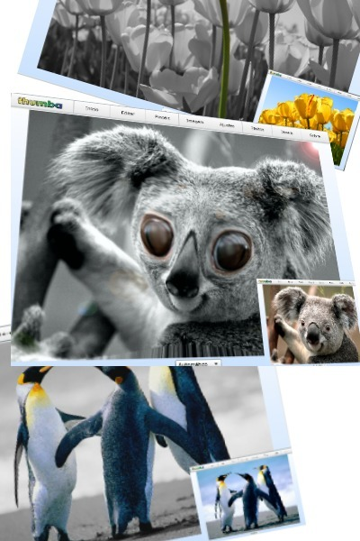 thumba - online image editor | Searching & sharing | Scoop.it