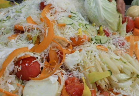 How to Use Food Scraps For Good, Rather Than Garbage | Healthy Living Lifestyle | Scoop.it