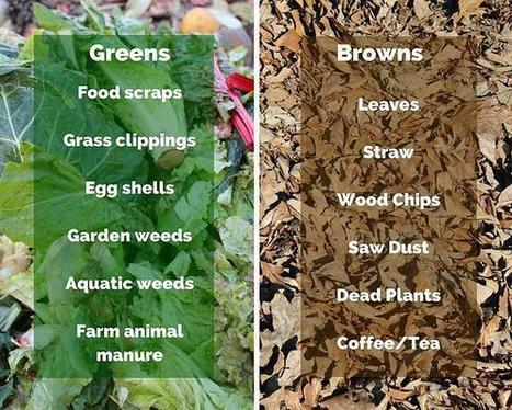 Stacking Functions: The chicken compost run | Permaculture Magazine | Jardin Potager Biologique | Scoop.it
