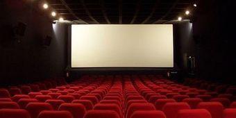 Acteurs trop payés et films subventionnés: le CNC contre-attaque | Focus Média : Banlieue, Diversité et Audiovisuel. | Scoop.it
