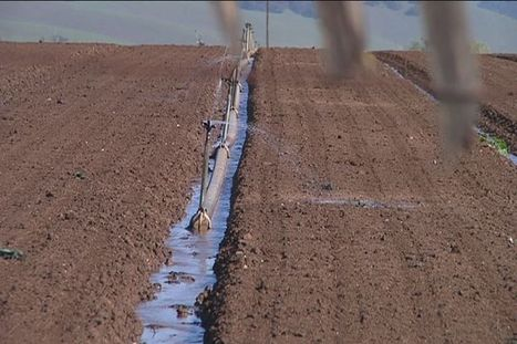 Water conservation on ag fields varies in Salinas Valley - KIONrightnow.com | Fish Habitat | Scoop.it