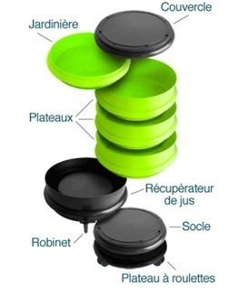 Le lombricomposteur français Wormbox | Nouveau portail internet | Scoop.it