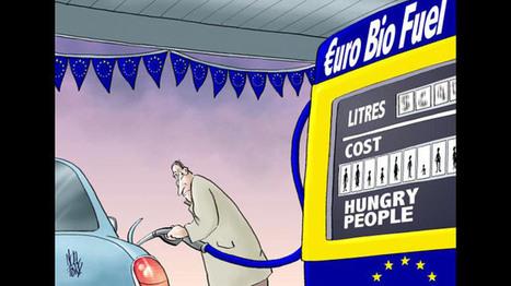 Oxfam accuse le puissant lobby de l'AGROCARBURANT en Europe: il aggrave la misère et la pollution   Planete DDurable   Scoop.it