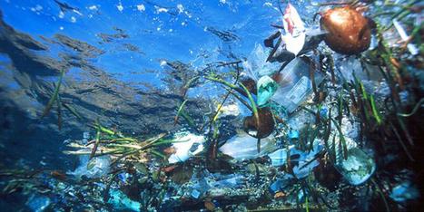 Leave the ocean garbage alone: we need to stop polluting first | http-www-scoop-it-t-nuestras-costas-estan-enfermas | Scoop.it