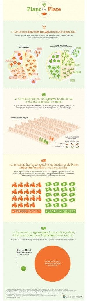 The way we farm now: Fruit and vegetables vs. commodity crops [INFOGRAPHIC] | Sustainable Futures | Scoop.it