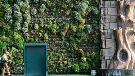 Un futuro de edificios comestibles - BBC Mundo - Noticias | ECOSALUD | Scoop.it