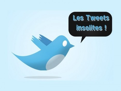 Les Tweets insolites | Strange days indeed... | Scoop.it