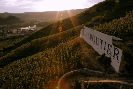 Chapoutier lights up the screen - French Wine News | Vitabella Wine Daily Gossip | Scoop.it
