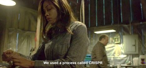 CRISPR comes to TV | PLOS Synthetic Biology Community | SynBioFromLeukipposInstitute | Scoop.it