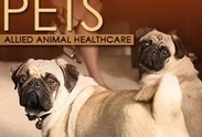 Allied Animal Healthcare (myaahc) | The Best Animal Clinic in Riverdale | Scoop.it