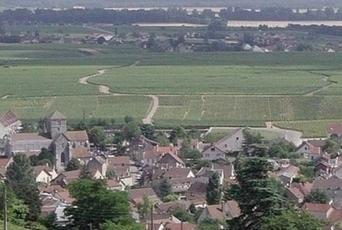 Au cœur des Climats… | Le Vin et + encore | Scoop.it