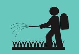DDT : l'insecticide responsable de cancers du sein | E-santé et médicaments en ligne | Scoop.it