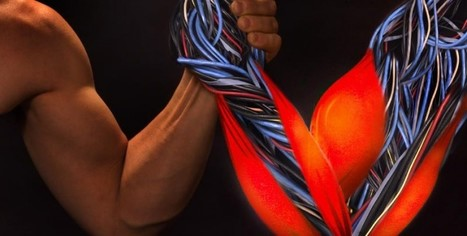Duke Researchers Create Artificial Human Muscles | Managing Technology and Talent for Learning & Innovation | Scoop.it