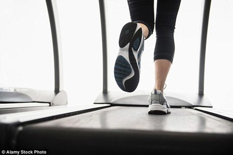 How exercise makes your brain grow bigger | Kickin' Kickers | Scoop.it